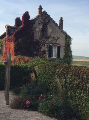 Cottage in the vineyard
